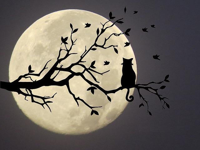 Pleine lune du 13octobre