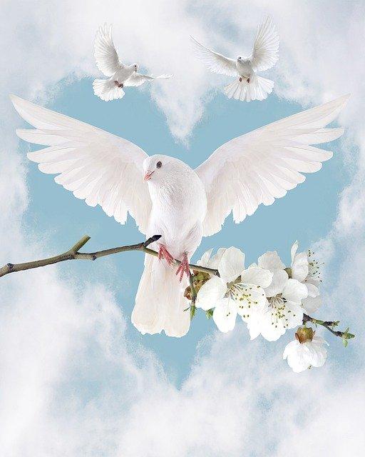 Sois en paix